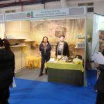 Ecofestival 2011 – Έκθεση Βιολογικών Προϊόντων & Υπηρεσιών