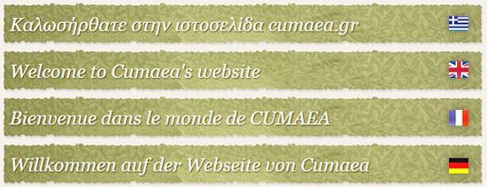 Νέες γλώσσες στην ιστοσελίδα μας